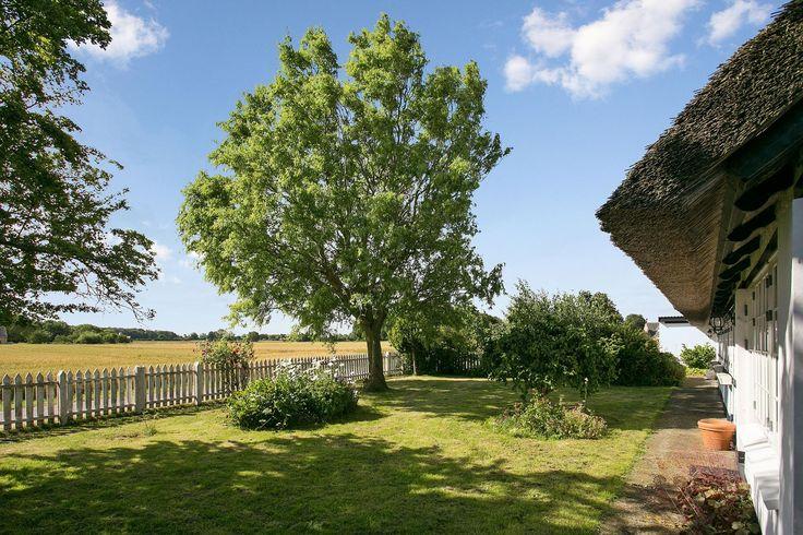 Villa på Hestehaven i Ullerslev - Have