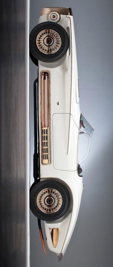 1965 Mercer Cobra Concept Car | Photo : Auto Clasico