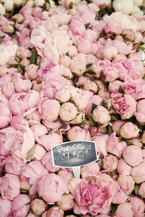 Peonies in Paris Market, Fine Art Photograph, French Home Decor $30.00