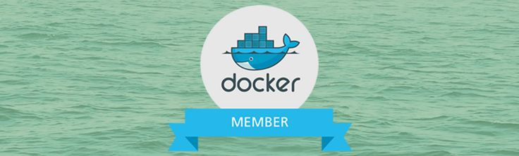 With Docker you can absolutely Optimize your IT Infrastructure by eliminating guest OS or Hypervisor & it's licensing cost. Elitery ready to assist You!