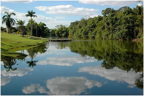 O Jardim Botânico é considerado a maior área verde de Goiânia. Para saber mais sobre a cidade e suas paisagens naturais, acesse nosso blog: www.timberland.com.br/blog