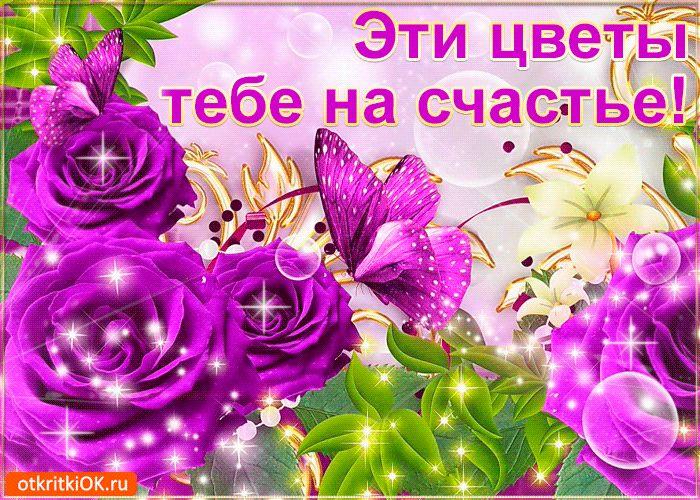 Рая с днем рождения картинки красивые цветы, статусы картинок