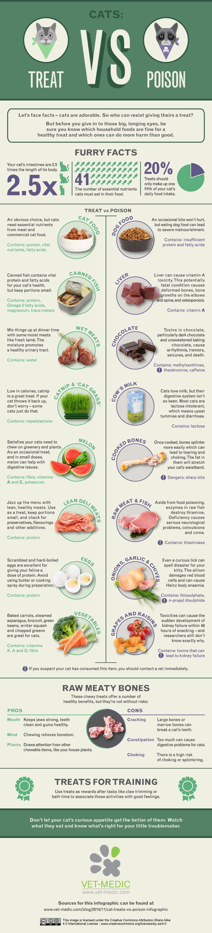 Infographic: Food You Should Never Feed To Your Cats - DesignTAXI.com