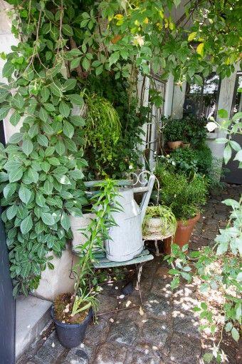 グリーン&アンティークを身近にオリジナルのアレンジでフランス流癒しの空間を