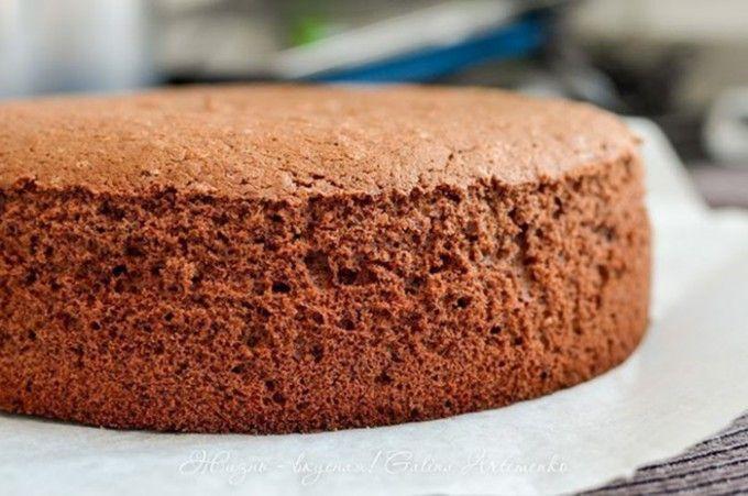Základní recept na kakaový korpus