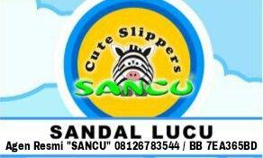 Agen Sancu Khusus Kota Padang Umumnya Sumatera Barat: Sandal sancu lucu