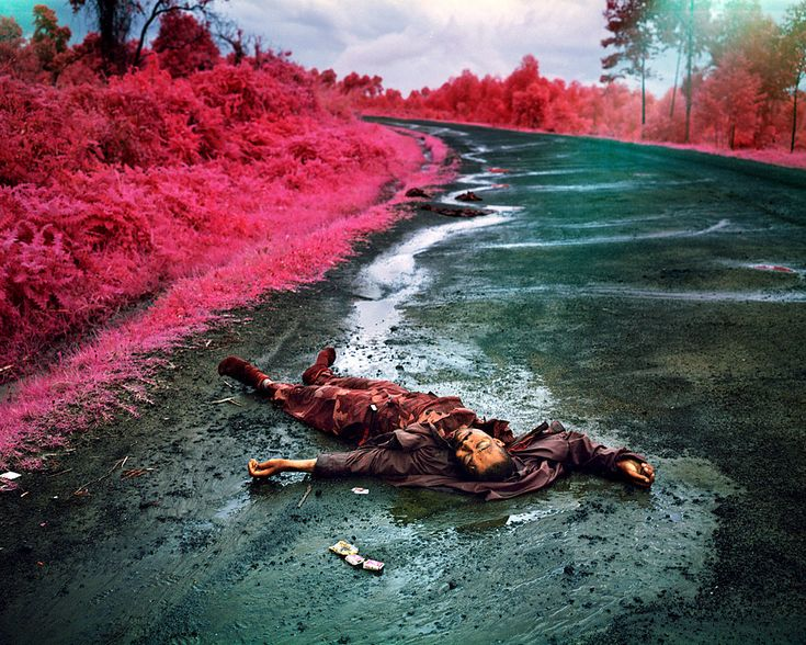 The Color of War in Congo - Photographs - NYTimes.com. The pink tint is because the photographer used an infrared lens.