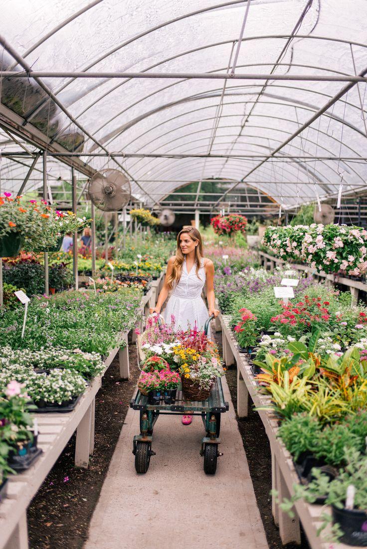 Garden Prep Gardening Photography Garden Nursery Garden Center