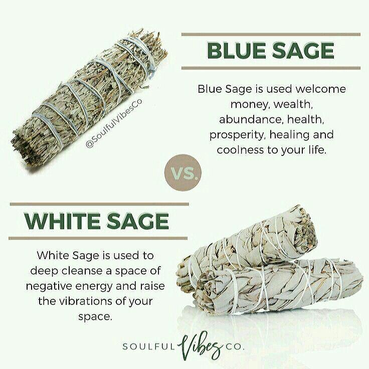 23++ White sage vs palo santo inspirations