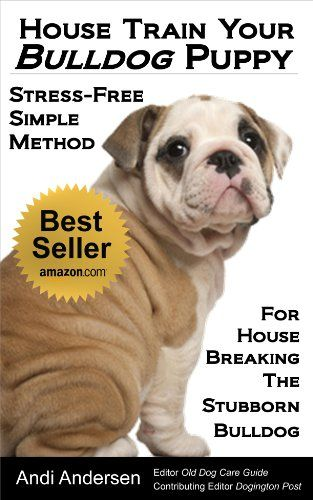 Potty Training Your English Bulldog? Bully Jumps On People?