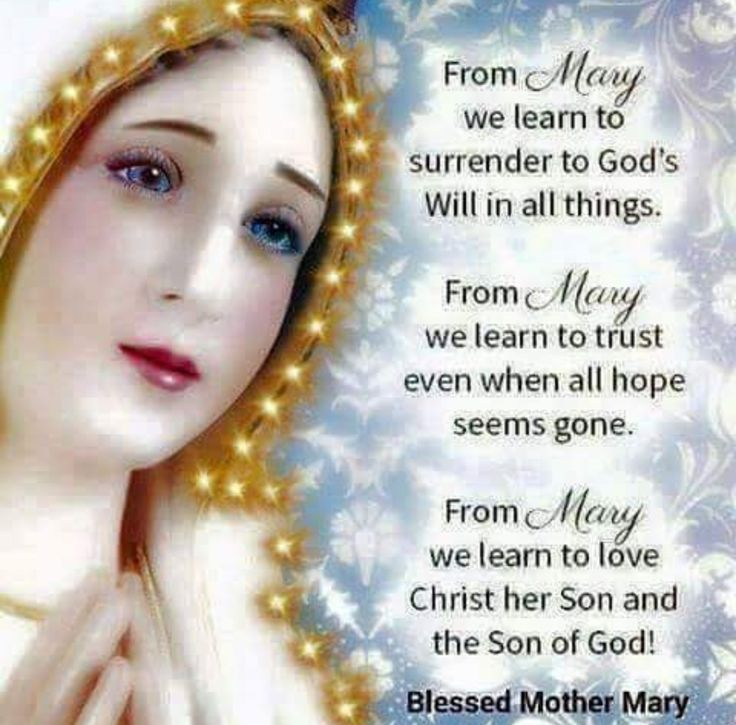 Pray for us O Holy Mother of God, that we may be made worthy of the promises ...