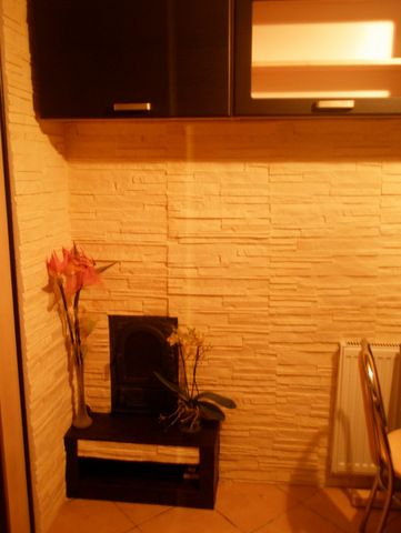 http://allegro.pl/kamien-dekoracyjny-promocja-okazjna-super-cena-i5469307699.html