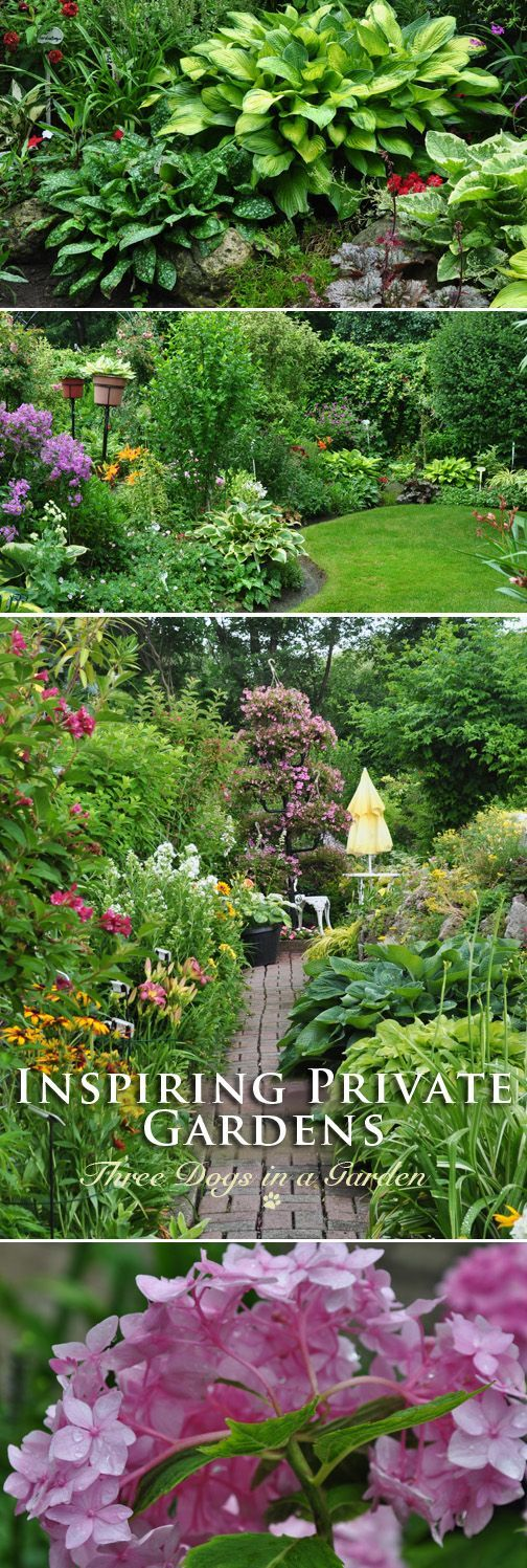 exquisite home and garden showplace. I just love private gardens that normal people create  find them infinitely preferable to those of stately homes Three Dogs in a Garden Joe s 380 best Ideas and Designs images on Pinterest Gardening