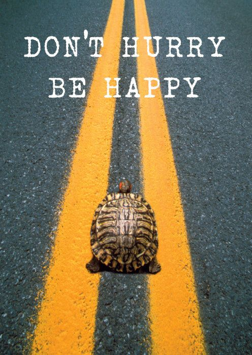 Don't hurry, be happy