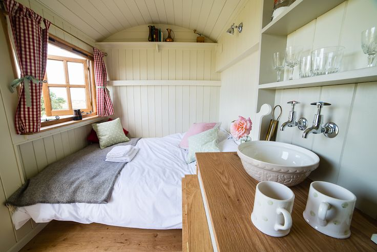 Elmley Nature Reserve Shepherds Huts, Kent. Little Owl overlooks oak trees with resident barn owls. You will also have views of sunrises, wading birds, hares and wildfowl http://www.organicholidays.com/at/3385.htm