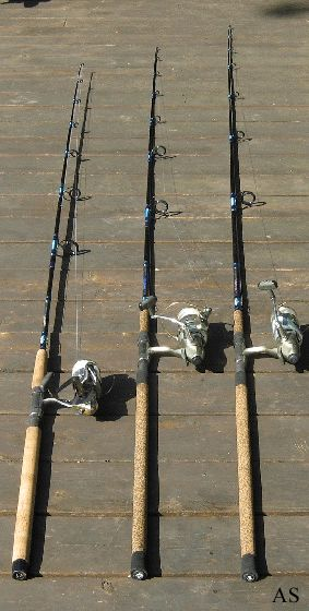 Best 25 surf fishing ideas on pinterest surf fishing for Best surf fishing rods