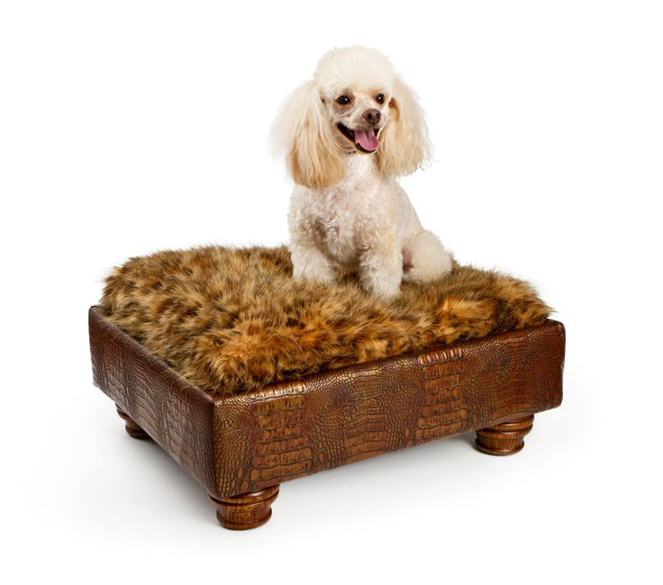 Brown Pet Bed Boy Dog Bed Small Dog Bed от PoochieofBevHills