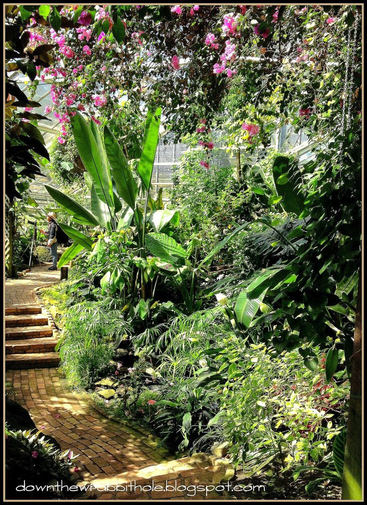 "The tropical butterfly garden greenhouse at the Devonian Botanical Gardens near Edmonton. Find out more at ""Down the Wrabbit Hole - The Travel Bucket List"". Click the image for the blog post."