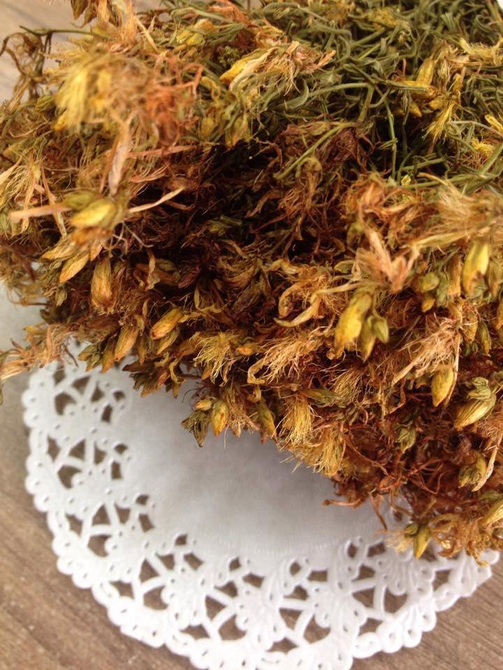Greek organic St.John's wort, Hypericum perforatum by Armenos on Etsy