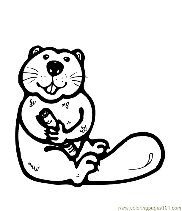 Osu Beaver Coloring Pages: Beaver Coloring Sheet Reinanco