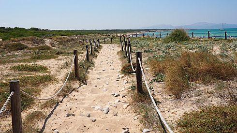 http://www.seemallorca.com/walking/routes/gr222-trail-from-son-serra-de-marina-to-colonia-de-sant-pere-north-mallorca-686345