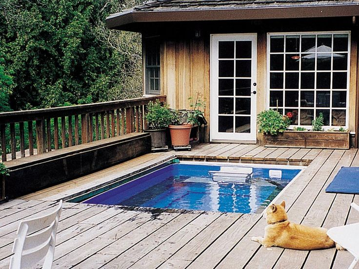 19 Best Swimming All Year Round Images On Pinterest
