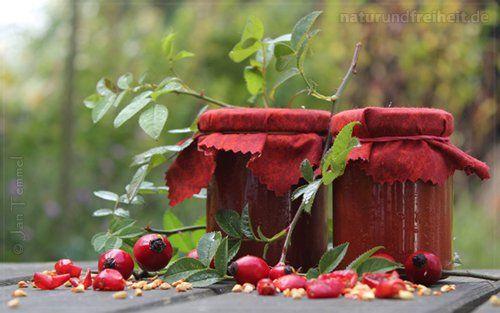 Hagebutten-Marmelade  Diese Marmelade ist bestens zum Frühstücken geeignet.