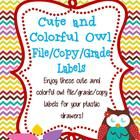 Enjoy these cute and colorful owl file/grade/copy labels for your plastic drawers.! If you love the design, check out the other cute and colorful o...