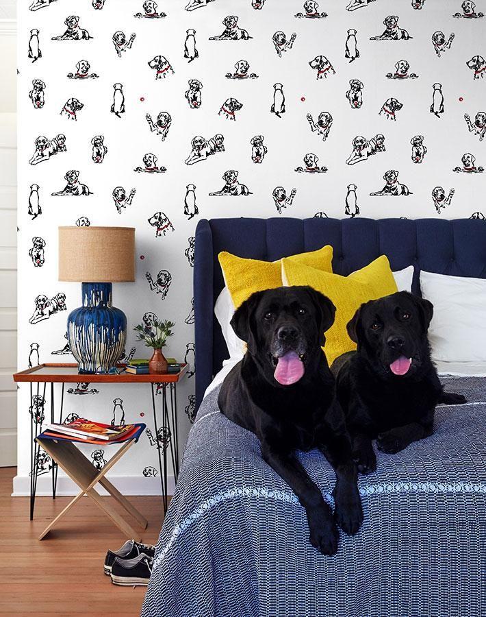 Nacho Toile Wallpaper By Nathan Turner White Toile Wallpaper Wallpaper Removable Wallpaper