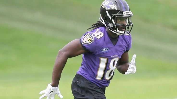 Fantasy Football: Breshad Perriman Injury is Concerning - TPS  With the impact rookie wide receivers made a season ago, every single fantasy owner is looking for the next Odell Beckham Jr.....