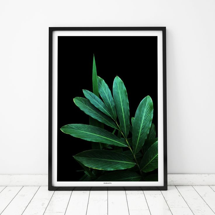 Plakat: Green leaves 2