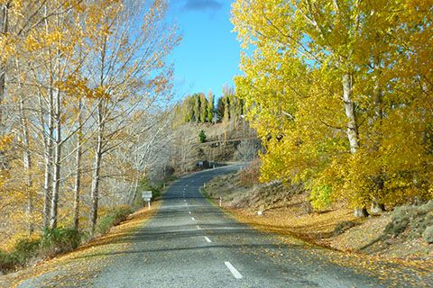 A roadtrip in NZ is the best way to see it. Here's Central Otago in autumn