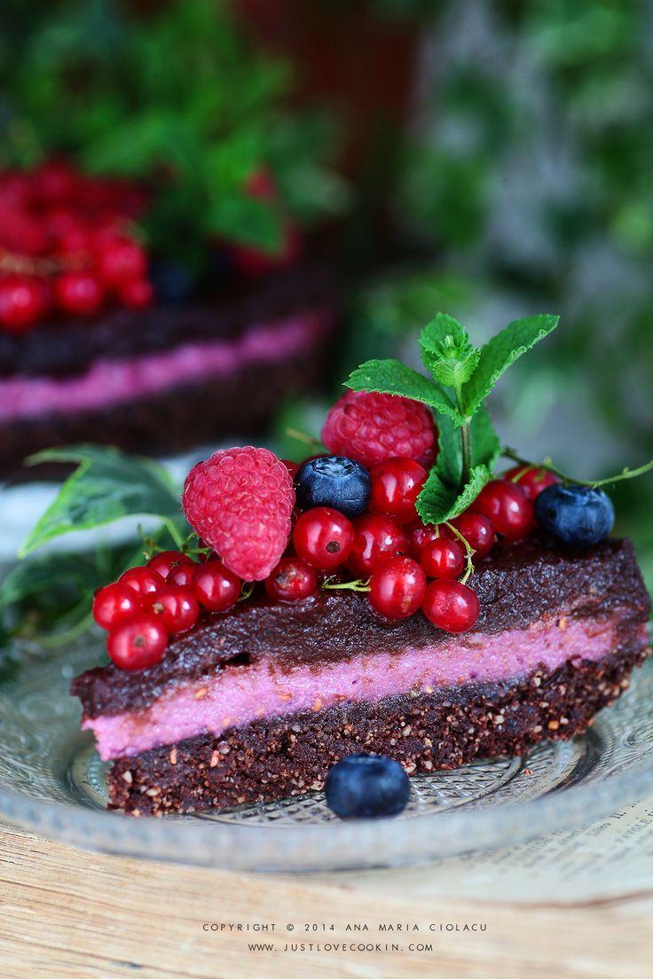 Raw Vegan Chocolate and Raspberry Brownie Cake 8