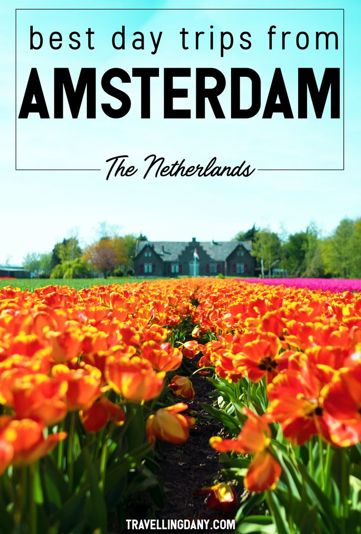 The most incredible day trips from Amsterdam