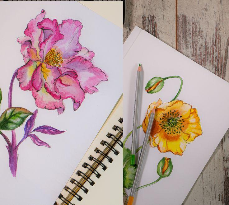#flower #design #illustration #beauty #artist #work #art graphic design on Behance