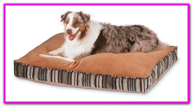 Durable Dog Bed For Chewers We Ve Rounded Up Super Tough But Still Cozy Options For The Chewers Shredders Washable Dog Bed Dog Pillow Bed Cool Dog Beds