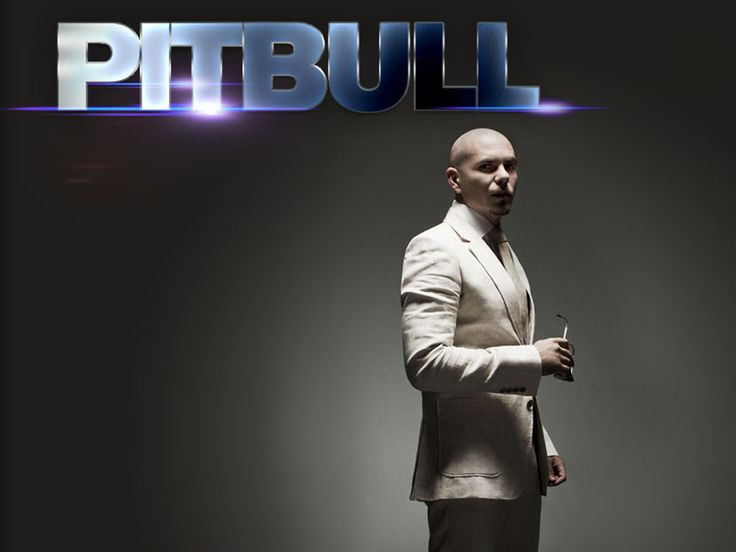247 best images about Pitbull..One Day... on Pinterest ...