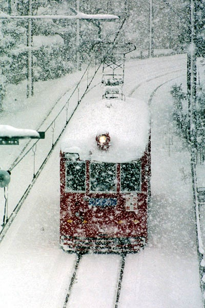 Tram was running the city of Gifu by Takahiro Kuriyama • 1 year ago - Japan