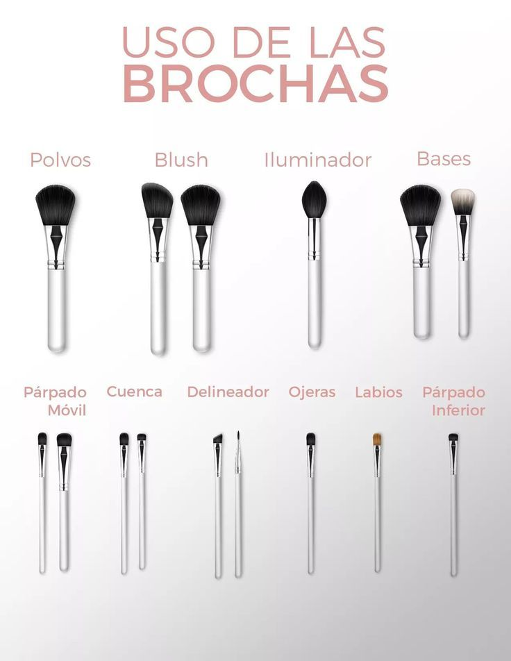 Uso de cada brocha de maquillaje #maquillaje #makeup