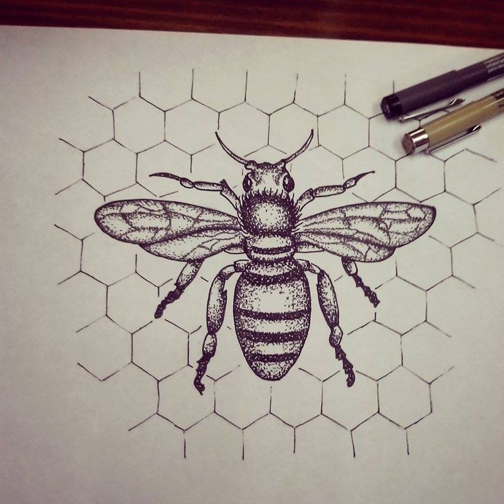 traditional honey bee tattoo - Google Search                                                                                                                                                                                 More