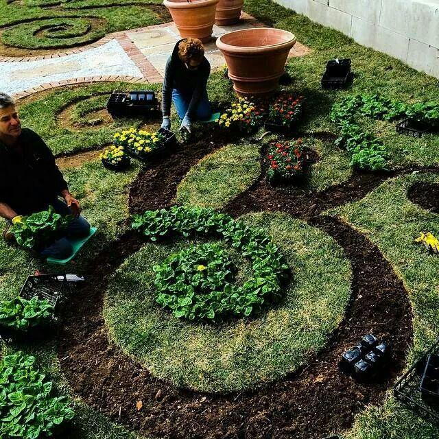 Scroll Garden