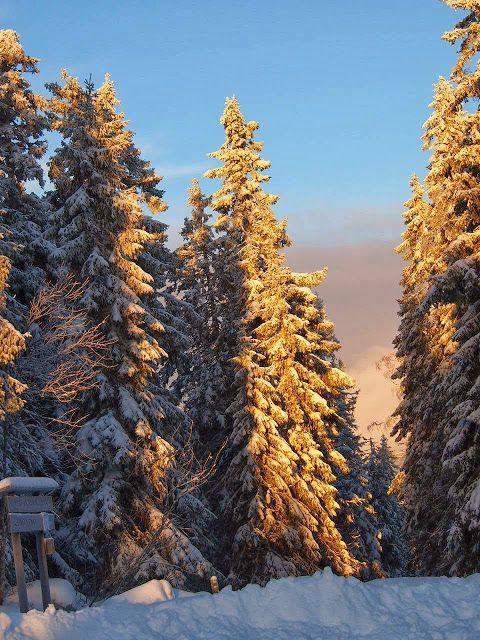 Talvipäivä lumisessa maisemassa Kohti Joulua -joulublogi: Kävelyretkiä talvisessa Vuokatissa http://www.kohtijoulua.fi/