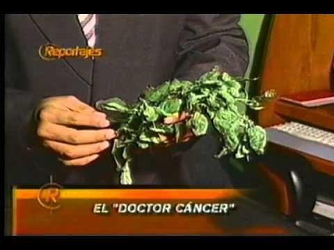 cura de cancer utero prostata mama medicina natural casero canal 5 uriel...