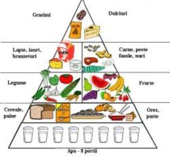 Piramida alimentelor - Alimentele si importanta lor | Food ...