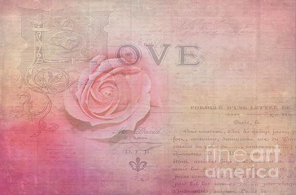 #LA #ROSE #D'AMOUR BY #Kaye #Menner #Photography Quality Prints Cards Products at: http://kaye-menner.pixels.com/featured/la-rose-damour-by-kaye-menner-kaye-menner.html