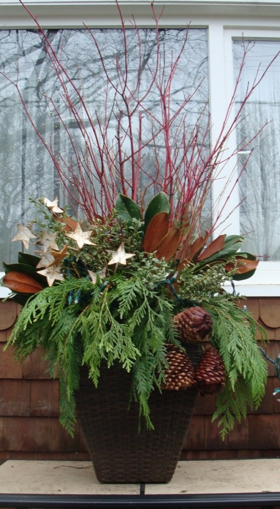Winter Outdoor Decor Part - 33: DIY - Winter Urns - Whimsical Birch Stars!