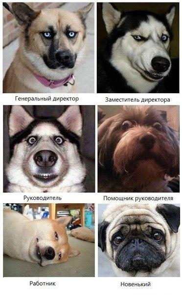 есть в этом что-то )))