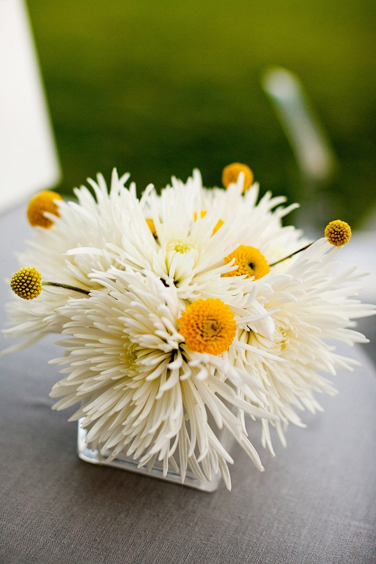 best 25 small flower arrangements ideas that you will like on