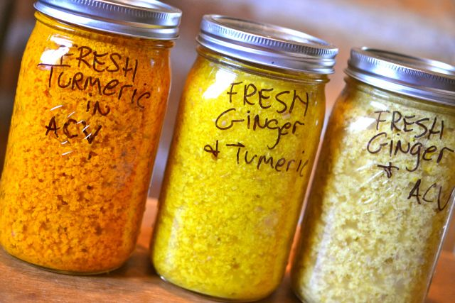 How to preserve fresh turmeric or ginger we grow (or buy). Lasts up to a year in the fridge.
