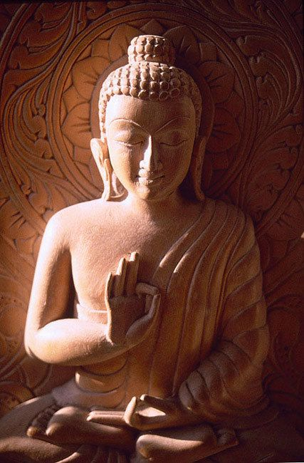 Buddha: The basics of Buddhism are to live a moral life, be mindful and aware of thoughts and actions, and to develop wisdom and understanding.